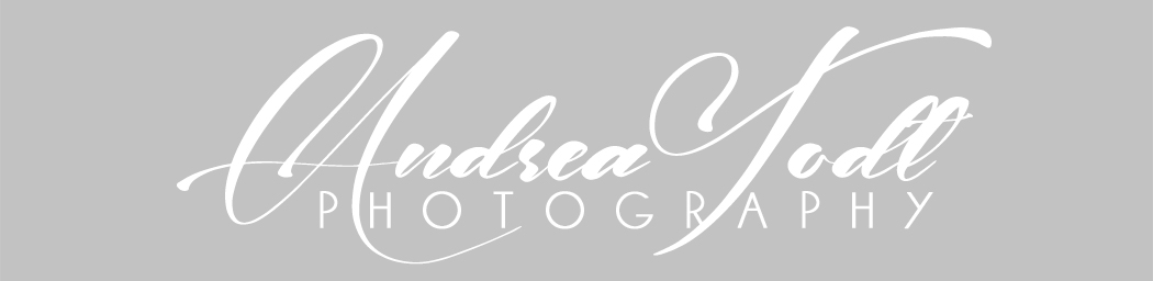 Logo for Andrea Todt Photography